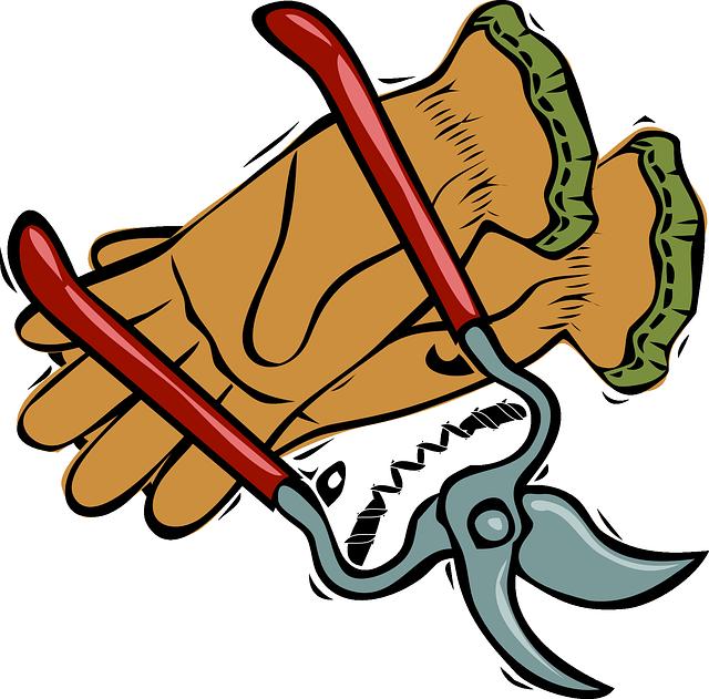pruning-shears-24437_640